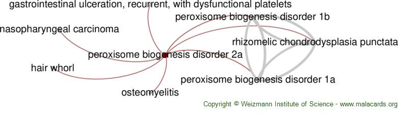 Diseases related to Peroxisome Biogenesis Disorder 2a