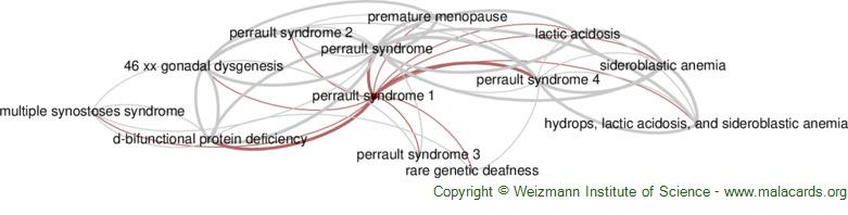 Diseases related to Perrault Syndrome 1
