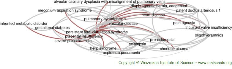 Diseases related to Persistent Fetal Circulation Syndrome