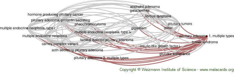 Diseases related to Pituitary Adenoma 1, Multiple Types