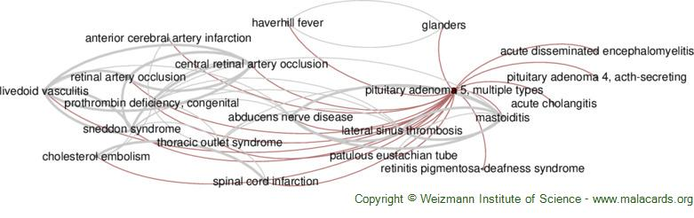 Diseases related to Pituitary Adenoma 5, Multiple Types