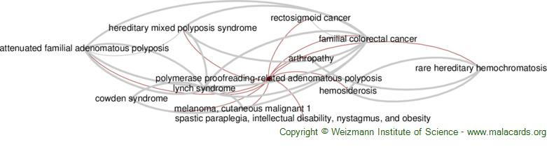 Diseases related to Polymerase Proofreading-Related Adenomatous Polyposis