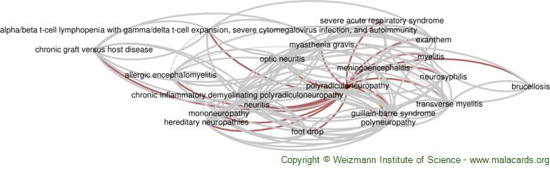 Diseases related to Polyradiculoneuropathy
