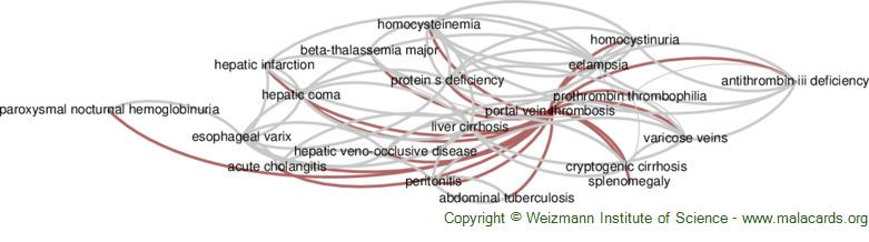 Diseases related to Portal Vein Thrombosis