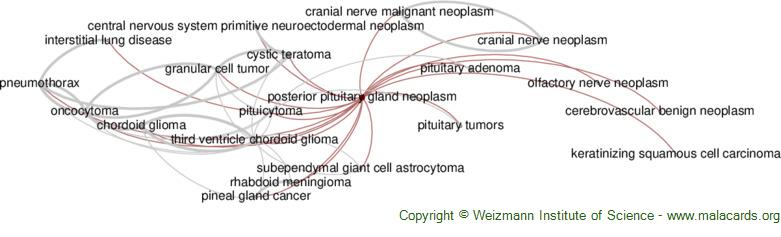 Diseases related to Posterior Pituitary Gland Neoplasm