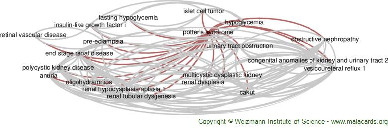 Diseases related to Potter's Syndrome