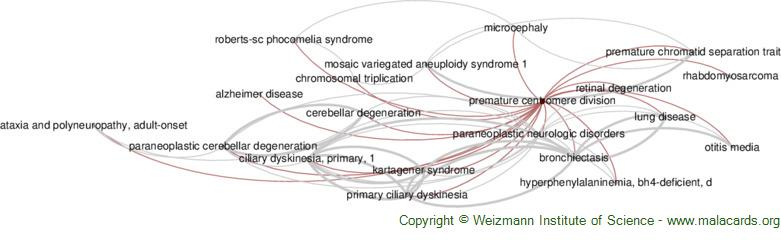 Diseases related to Premature Centromere Division