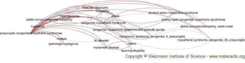 Diseases related to Presynaptic Congenital Myasthenic Syndromes