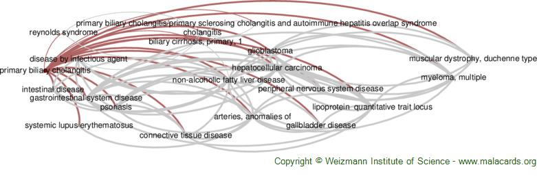 Diseases related to Primary Biliary Cholangitis