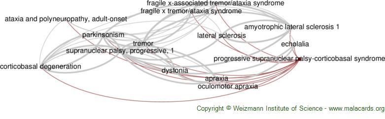 Diseases related to Progressive Supranuclear Palsy-Corticobasal Syndrome