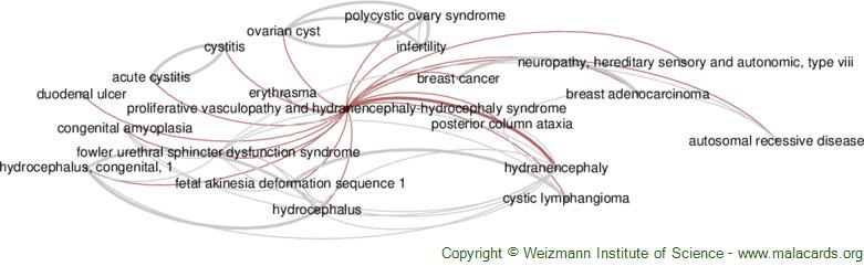 Diseases related to Proliferative Vasculopathy and Hydranencephaly-Hydrocephaly Syndrome