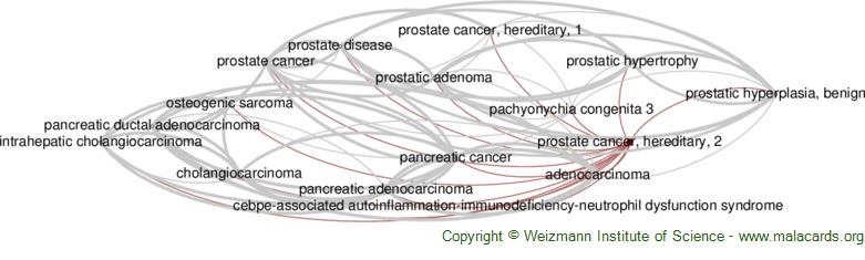 Diseases related to Prostate Cancer, Hereditary, 2