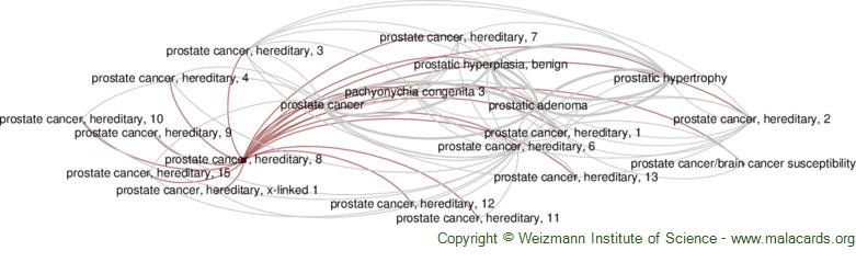 Diseases related to Prostate Cancer, Hereditary, 8