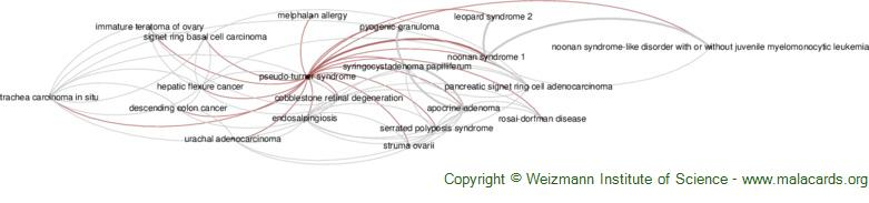 Diseases related to Pseudo-Turner Syndrome