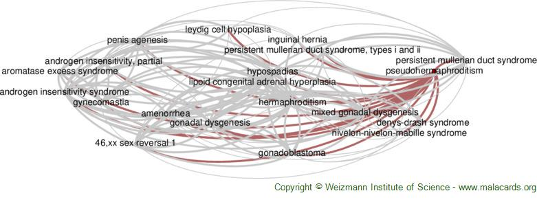 Diseases related to Pseudohermaphroditism