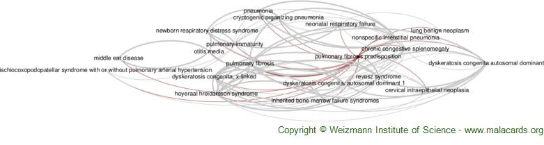 Diseases related to Pulmonary Fibrosis Predisposition