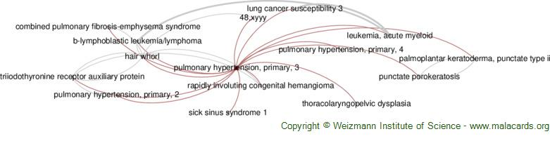 Diseases related to Pulmonary Hypertension, Primary, 3