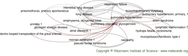 Diseases related to Pulmonary Interstitial Glycogenosis