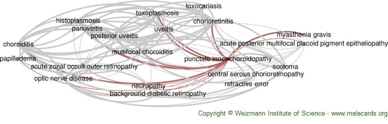 Diseases related to Punctate Inner Choroidopathy