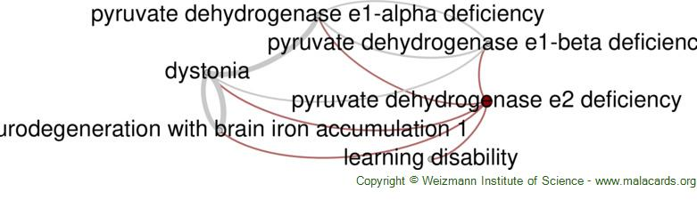 Diseases related to Pyruvate Dehydrogenase E2 Deficiency