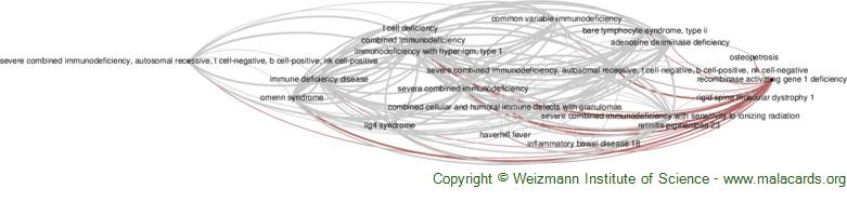 Diseases related to Recombinase Activating Gene 1 Deficiency