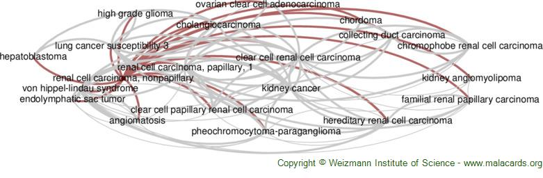 Diseases related to Renal Cell Carcinoma, Nonpapillary