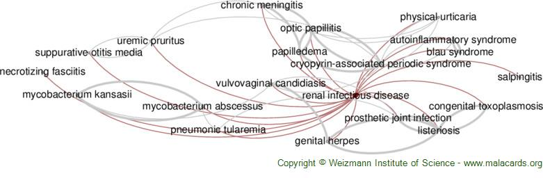 Diseases related to Renal Infectious Disease