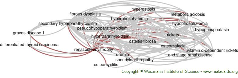 Diseases related to Renal Osteodystrophy