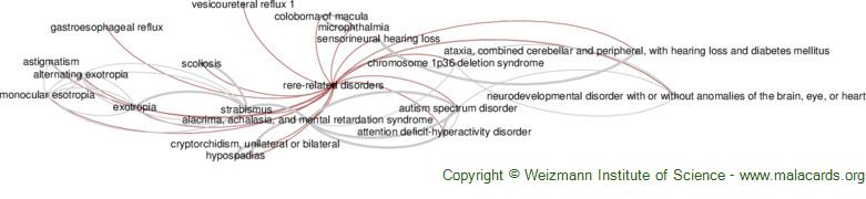 Diseases related to Rere-Related Disorders