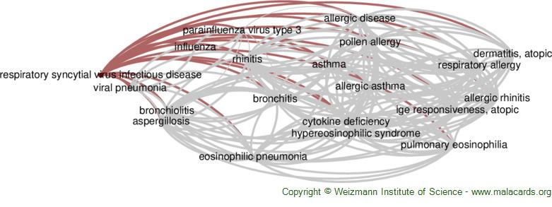 Diseases related to Respiratory Syncytial Virus Infectious Disease