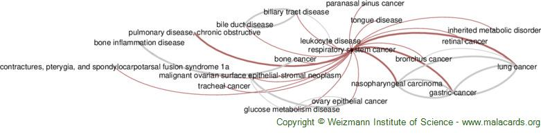 Diseases related to Respiratory System Cancer