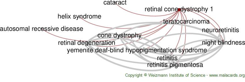 Diseases related to Retinal Cone Dystrophy 1