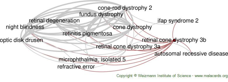 Diseases related to Retinal Cone Dystrophy 3b