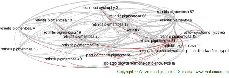 Diseases related to Retinitis Pigmentosa 13