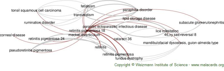 Diseases related to Retinitis Pigmentosa 18