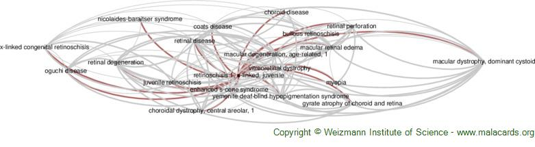 Diseases related to Retinoschisis 1, X-Linked, Juvenile