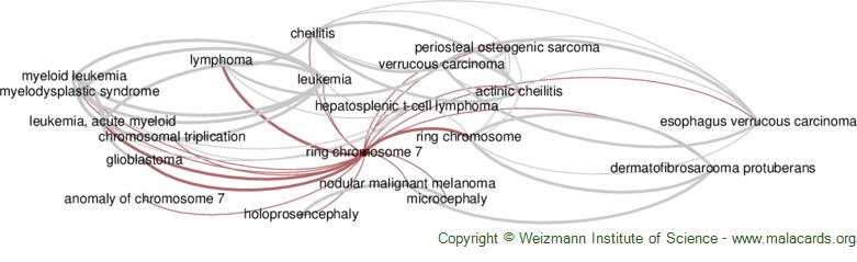 Diseases related to Ring Chromosome 7