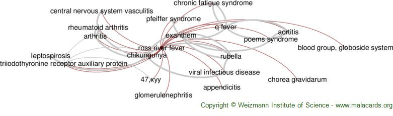 Diseases related to Ross River Fever