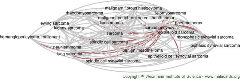 Diseases related to Sarcoma, Synovial