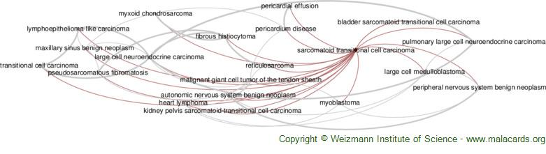 Diseases related to Sarcomatoid Transitional Cell Carcinoma