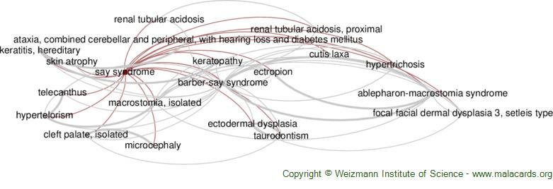 Diseases related to Say Syndrome