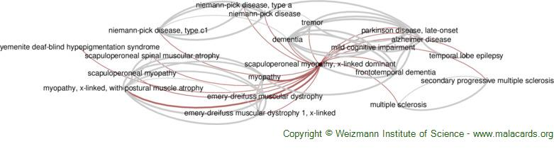 Diseases related to Scapuloperoneal Myopathy, X-Linked Dominant