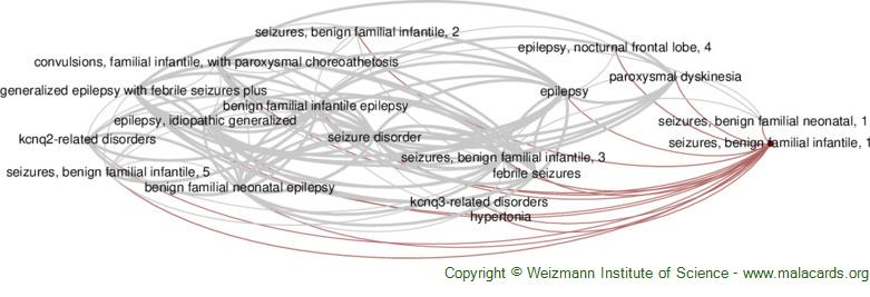 Diseases related to Seizures, Benign Familial Infantile, 1