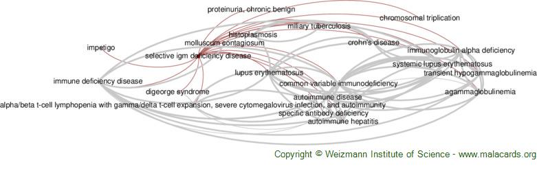 Diseases related to Selective Igm Deficiency Disease