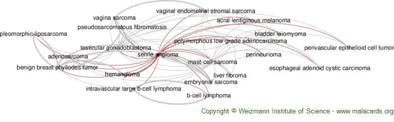 Diseases related to Senile Angioma