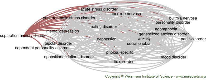 Diseases related to Separation Anxiety Disorder