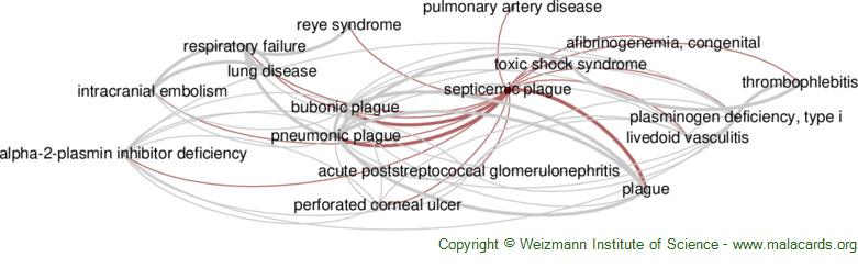 Diseases related to Septicemic Plague
