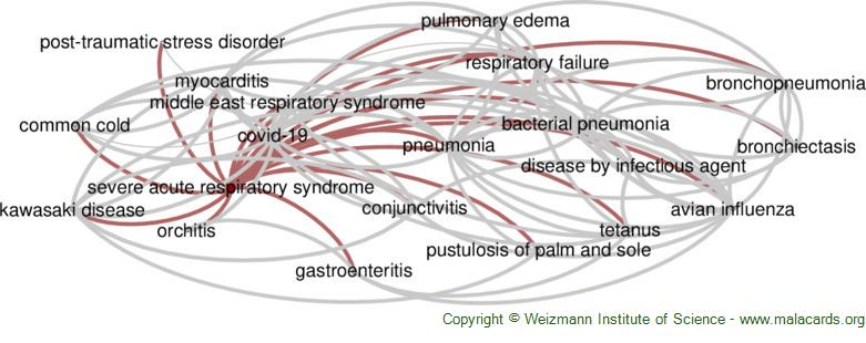 Diseases related to Severe Acute Respiratory Syndrome
