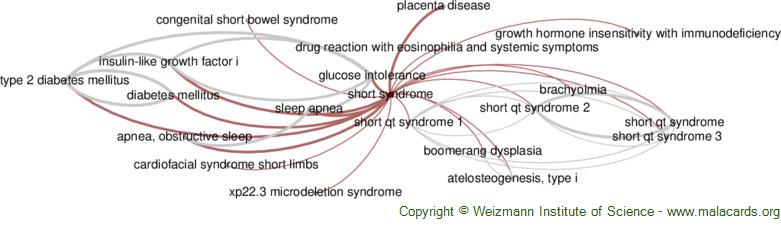 Diseases related to Short Syndrome