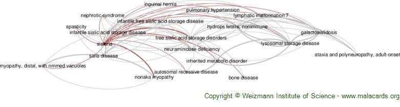 Diseases related to Sialuria